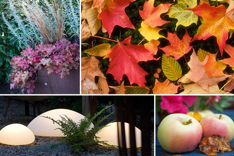 Fem tips för en vackrare höstträdgård